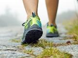 Сколько калорий сжигает ходьба