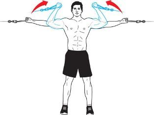 упражнение на бицепс