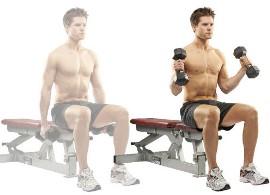 Упражнение «молот» с гантелями на  скамье