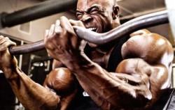 Что лучше для роста мышц