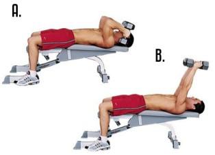 Упражнения для укрепления трицепса
