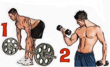базовые или изолирующие упражнения