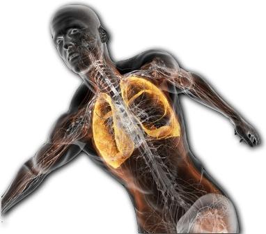 дыхание во время тренировок