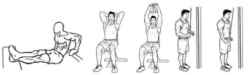 тренировка трицепса