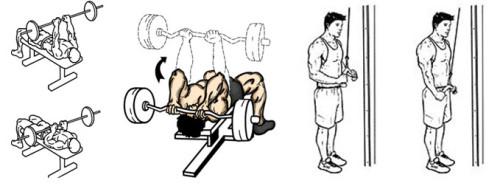 трицепс упражнения