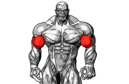 упражнения бицепс