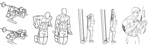 упражнения трицепс