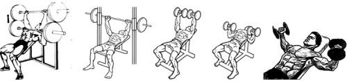 тренировка верха грудных