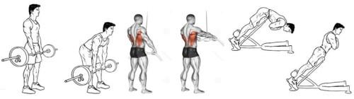 упражнения для низа спины